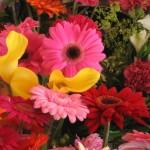 Helkavuoren kukka - koskilainen kukkakauppa